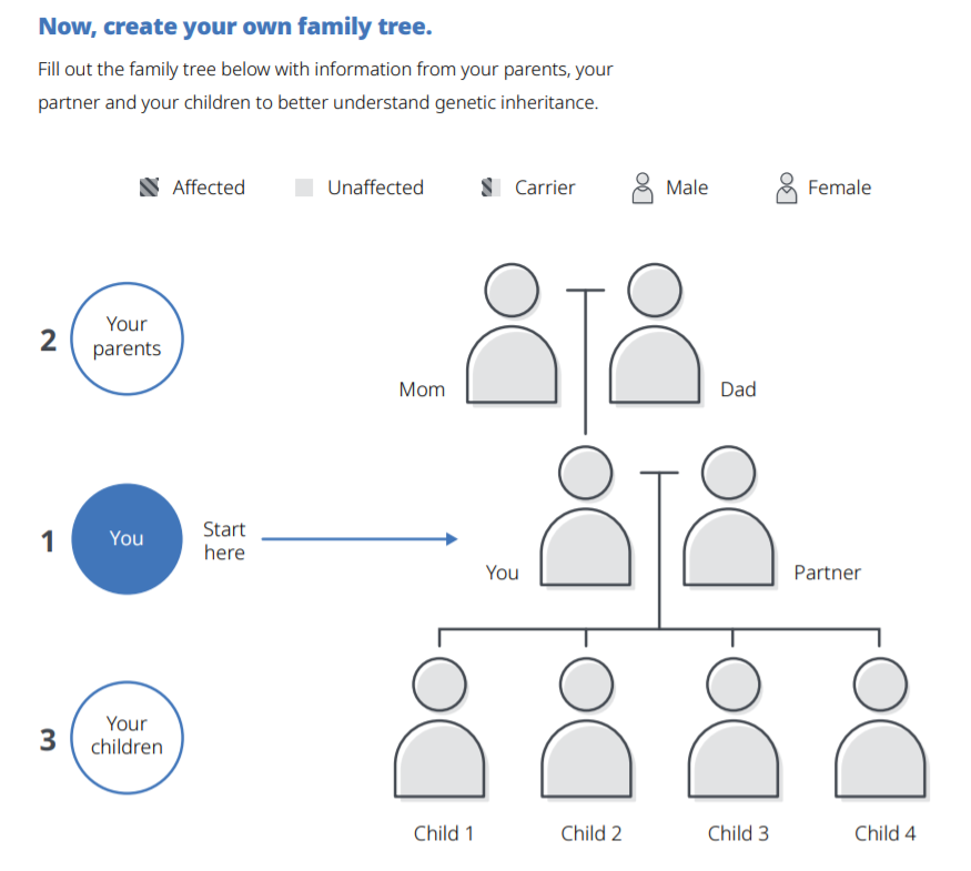 Create your own family - click here to open a PDF document and find a family tree worksheet.